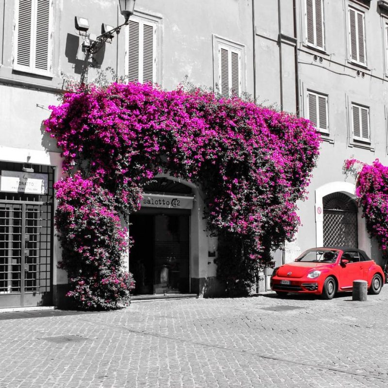 15_Rome_Hidden_Treasures (svitti@hotmail.it)